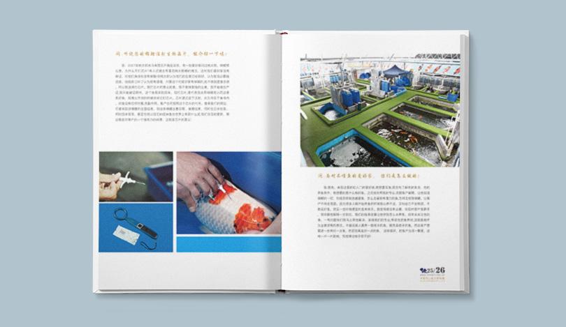 观赏鱼画册设计