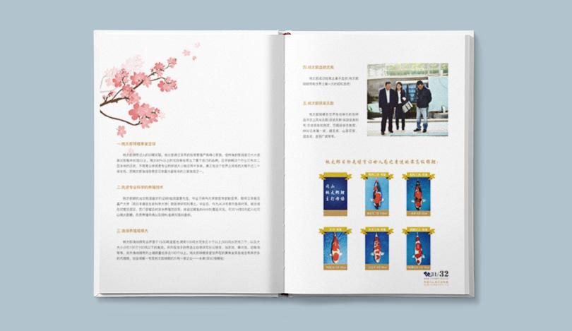深圳画册设计