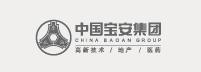 中国宝安集团